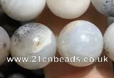 CAA3578 15.5 inches 10mm round parral dendrite agate beads