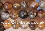CAA5046 15.5 inches 4mm round dragon veins agate beads wholesale