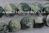 CAA704 15.5 inches 14mm round tree agate gemstone beads wholesale