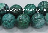 CAB54 15.5 inches 16mm round peafowl agate gemstone beads wholesale
