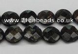 CAE115 15.5 inches 12mm faceted coin astrophyllite beads wholesale