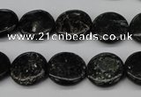 CAE46 15.5 inches 15mm flat round astrophyllite beads wholesale