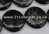 CAE49 15.5 inches 25mm flat round astrophyllite beads wholesale