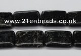 CAE92 15.5 inches 15*20mm rectangle astrophyllite beads wholesale