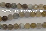 CAG2421 15.5 inches 6mm faceted round Chinese botswana agate beads