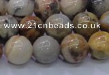 CAG6673 15.5 inches 10mm round natural crazy lace agate beads