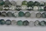CAG9823 15.5 inches 4mm faceted round moss agate beads