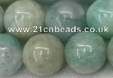 CAM1684 15.5 inches 12mm round natural amazonite beads wholesale