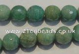 CAM815 15.5 inches 12mm faceted round Brazilian amazonite beads