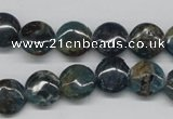CAP08 15.5 inches 12mm flat round apatite gemstone beads wholesale