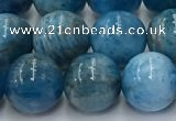 CAP632 15.5 inches 10mm round apatite beads wholesale