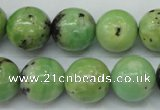 CAU215 15.5 inches 14mm round Australia chrysoprase beads