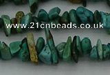 CCH678 32 inches 4*6mm - 5*8mm turquoise gemstone chips beads