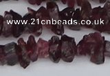 CCH704 15.5 inches 4*6mm - 6*8mm purple garnet chips beads