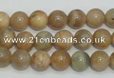 CCS304 15.5 inches 10mm round natural sunstone beads wholesale