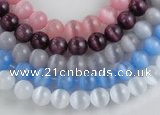 CCT02 Different color 10mm round cats eye beads Wholesale
