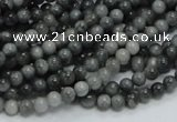 CEE01 15.5 inches 4mm round eagle eye jasper beads wholesale