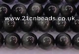 CEE503 15.5 inches 10mm round AAA grade green eagle eye jasper beads