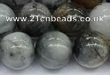 CEE537 15.5 inches 10mm round eagle eye jasper beads wholesale