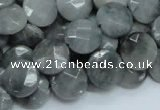 CEE58 15.5 inches 14mm faceted coin eagle eye jasper beads