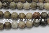 CFA26 15.5 inches 8mm round chrysanthemum agate gemstone beads