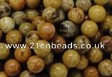 CFA32 15.5 inches 8mm round yellow chrysanthemum agate beads