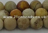 CFC223 15.5 inches 10mm round matte fossil coral beads wholesale