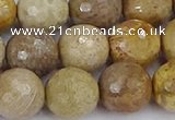 CFC232 15.5 inches 12mm faceted round fossil coral beads
