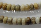CFC70 15.5 inches 5*8mm rondelle fossil coral beads wholesale