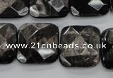 CHS28 15.5 inches 20*20mm faceted square natural hypersthene beads