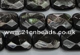 CHS37 15.5 inches 13*18mm faceted rectangle natural hypersthene beads