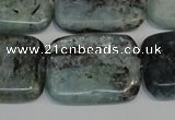 CKC54 15.5 inches 22*30mm rectangle natural kyanite beads wholesale