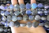 CLB1023 15.5 inches 12mm faceted coin labradorite gemstone beads