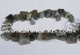 CLB222 Top drilled 15*25mm - 25*30mm freeform labradorite beads