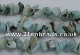 CLR30 15.5 inches natural larimar gemstone chip beads wholesale