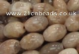 CMS07 15.5 inches 10*14mm rice moonstone gemstone beads wholesale