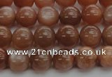 CMS1002 15.5 inches 8mm round AA grade moonstone gemstone beads
