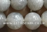 CMS1653 15.5 inches 10mm round grey moonstone beads wholesale