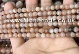 CMS1677 15.5 inches 4mm faceted round moonstone beads wholesale