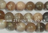 CMS504 15.5 inches 10mm round moonstone beads wholesale
