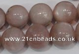 CMS759 15.5 inches 17mm round natural moonstone beads wholesale