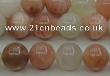 CMS891 15.5 inches 6mm round moonstone gemstone beads wholesale