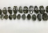 CNG3590 10*16mm - 15*30mm faceted nuggets labradorite beads