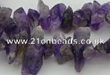 CNG5030 15.5 inches 4*8mm - 6*15mm nuggets amethyst beads