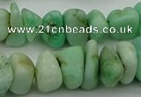 CNG5043 15.5 inches 6*10mm - 12*18mm nuggets Australia chrysoprase beads