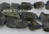 CNG5528 15.5 inches 10*14mm - 15*20mm nuggets labradorite beads