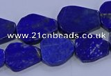 CNG5716 15.5 inches 12*16mm - 15*20mm freeform lapis lazuli beads