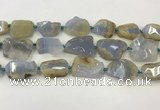 CNG6949 15.5 inches 22*30mm - 30*40mm freeform blue chalcedony beads