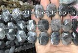 CNG7755 13*18mm - 15*25mm faceted freeform cloudy quartz beads