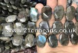 CNG7774 13*18mm - 15*25mm faceted freeform labradorite beads